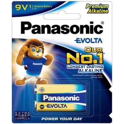 9 VOLT Panasonic Evolta 6LR61EG/1B Battery, 1 Pack